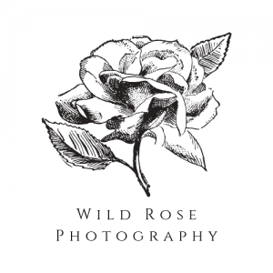 Wild Rose Photography